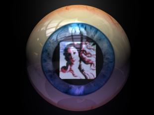 Artificial Sight